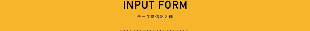 INPUT FORM 大一印刷のデータ送信記入欄