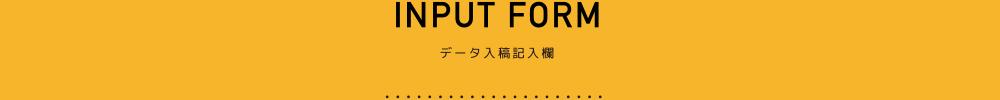 INPUT FORM 大一印刷のデータ入稿記入欄